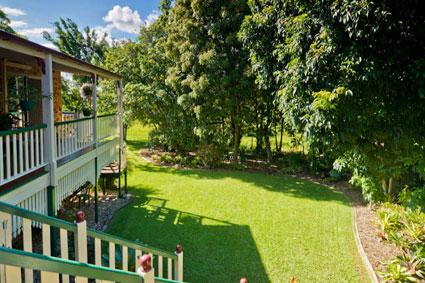 City Garden Tips Mowing Lawns Whipper Snipper