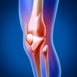 Glucosamine, What is it?