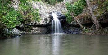 Kondalilla Falls Walk, a great Sunshine Coast Walk