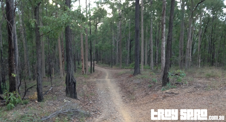 Mountain Bike riding trails and tracks at Jinker Track on Bunyaville Conservation Reserve