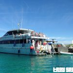A day at Lady Musgrave Island