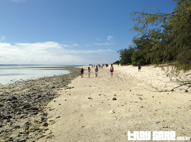 Lady Musgrave Island Back Beach View Other Way