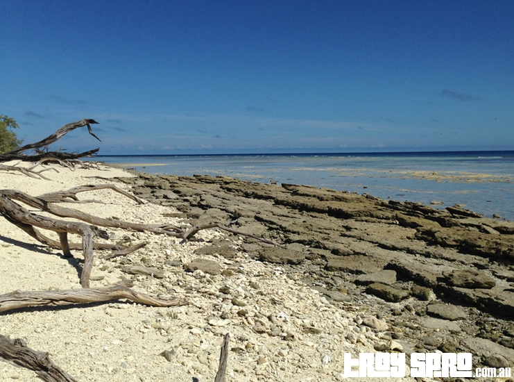 Lady Musgrave Island Back Beach View One Way