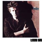 Play Boys of Summer by Don Henley