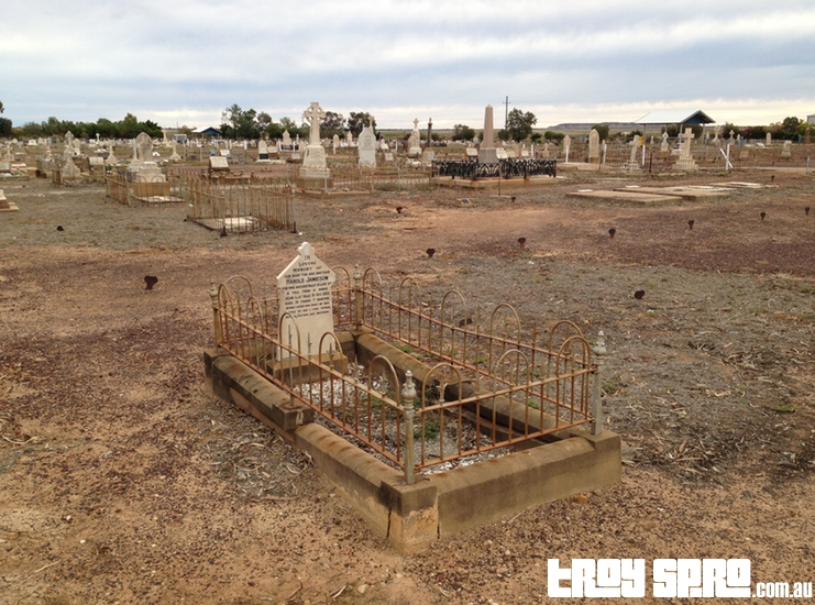Graves and Headstones in Winton Cemetery