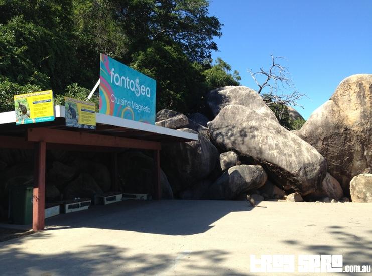 Feeding the Wildlife on Magnetic Island