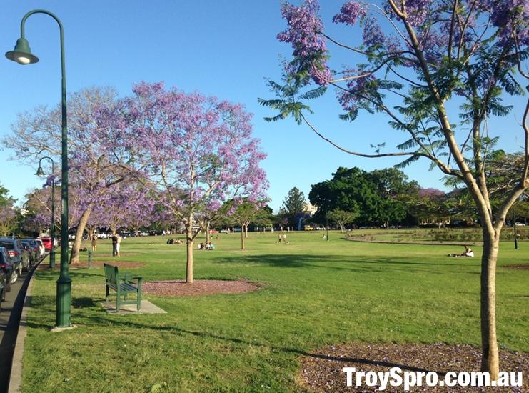 New Farm Park in Brisbane City