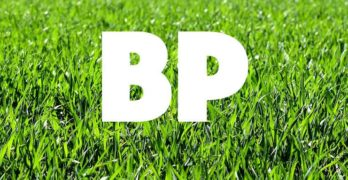 What does BP mean in Rugby Union?