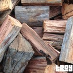 Buy Firewood in Brisbane