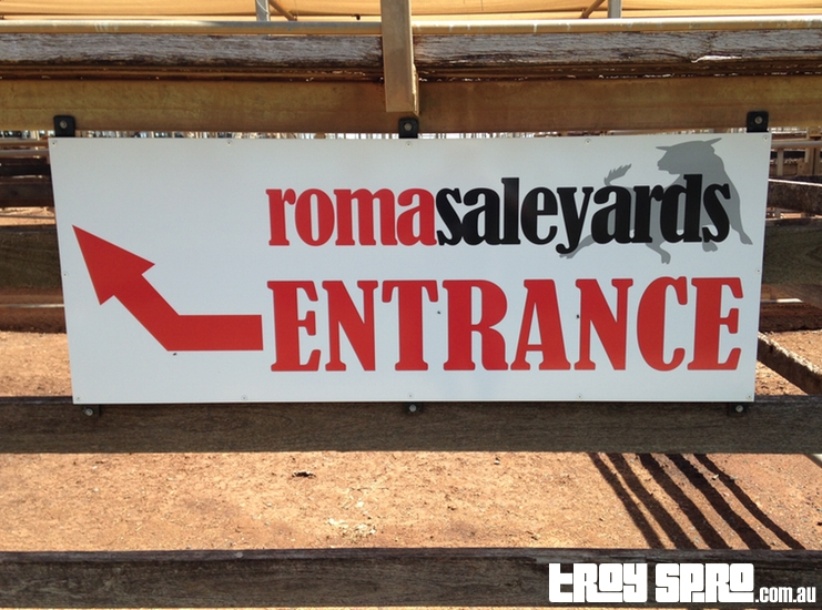 Roma Saleyards Roma Queensland Australia
