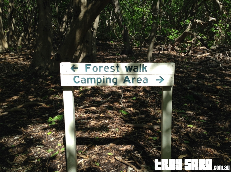 Lady Musgrave Island Camping Area Forest Walk Sign