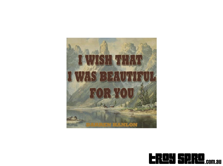 Play I Wish I Was Beautiful For You by Darren Hanlon on Guitar