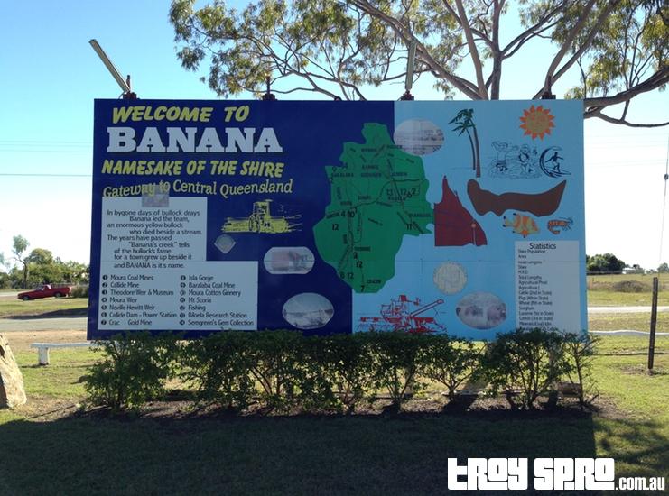 Banana in Queensland