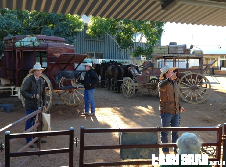 Kinnon and Co Stagecoach Experience Morning Ride Longreach