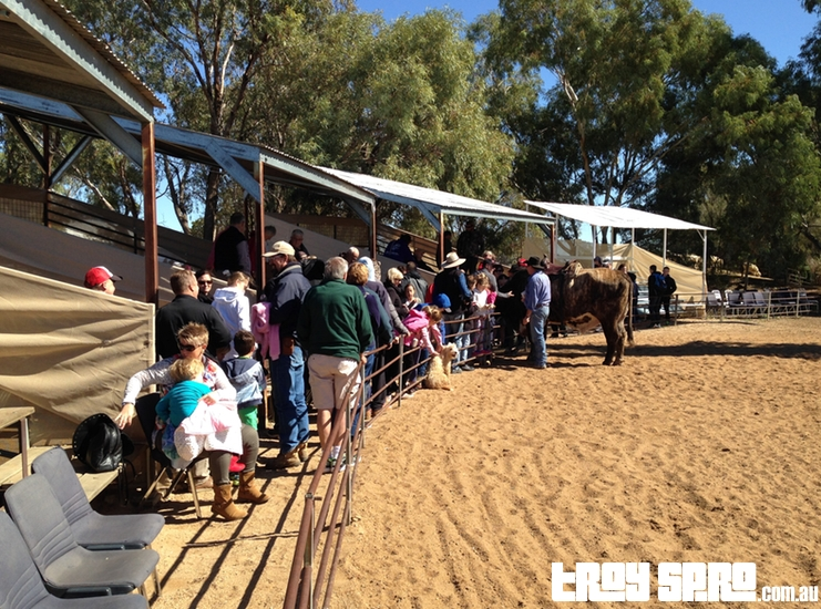Morning Show Stockmans Hall of Fame Outback Stockmans Show Longreach