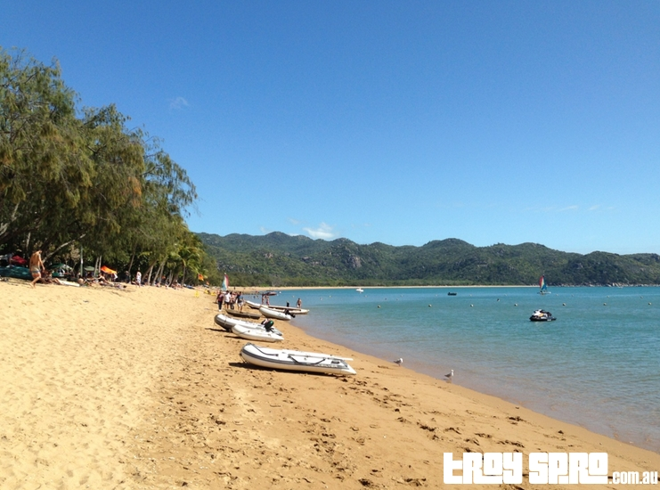 Horseshoe Bay Beach Magnetic Island Townsville