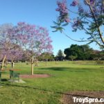 New Farm Park in Brisbane City